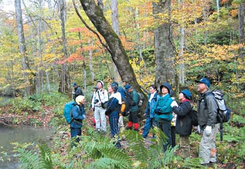 Planning and conducting of eco-tours[Towada]
