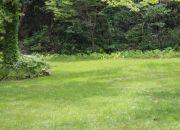 Lawn Site